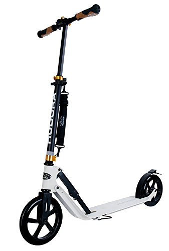 kick scooter for commuting