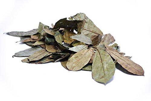 Teesein Kannst du sein Graviola Blätter 200gr I Soursop Leaves I Stachelannone Blätter I Graviola Extrakt I Frucht- und Pflanzenextrakt I naturbelassen u. unbehandelt