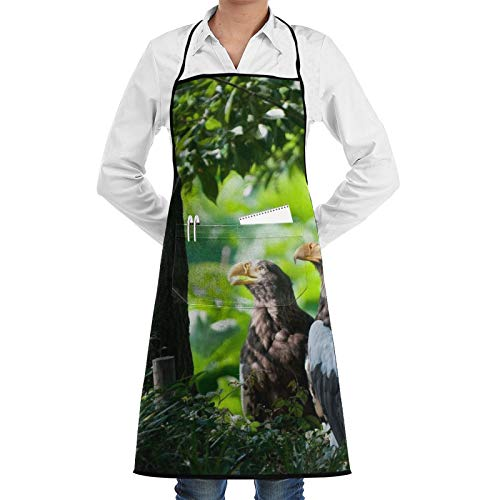 Delantal de chef de madera con diseño de pájaros y hierba predadora para mujeres y hombres, divertido delantal de barbacoa, delantal ajustable con bolsillos