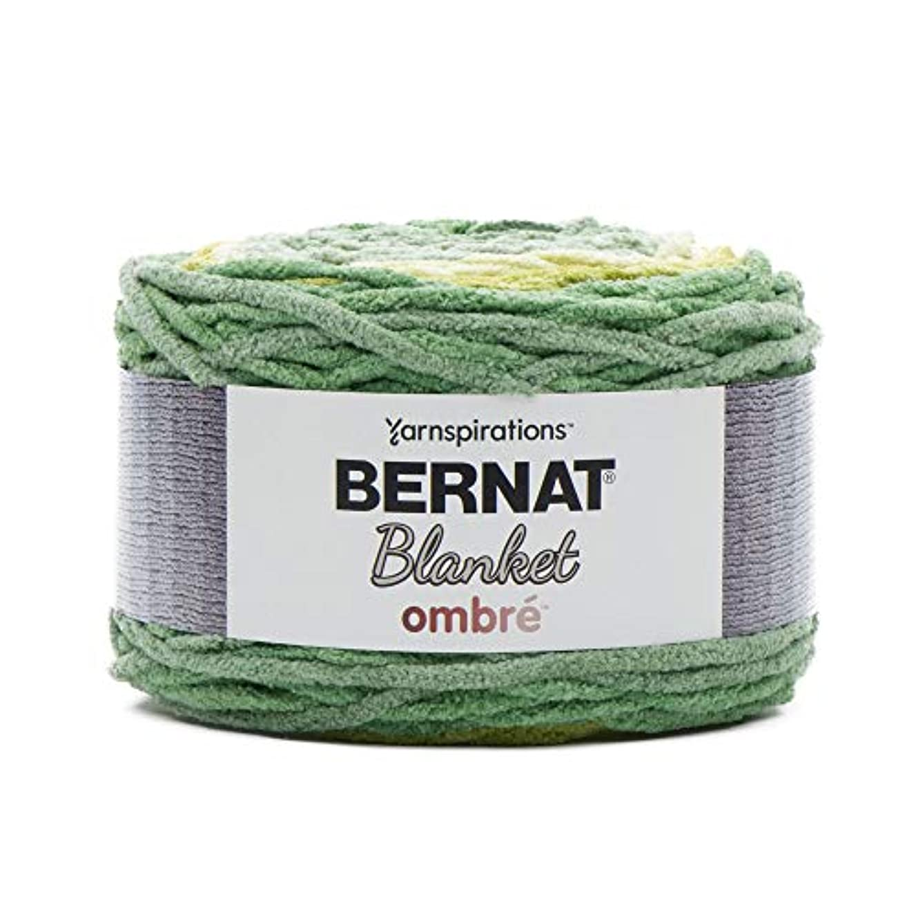 Bernat 16103636012 Blanket Ombre Yarn, Spring Green