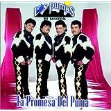 Promesa Del Puma