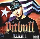 Songtexte von Pitbull - M.I.A.M.I.