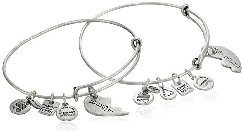 Alex and Ani 'Charity by Design' Best Friends Rafaelian Silver-Tone Bangle Bracelet, Set of 2