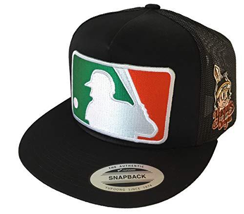 Béisbol Logo in Front Yaquis de obregon 2 Logos hat Black mesh
