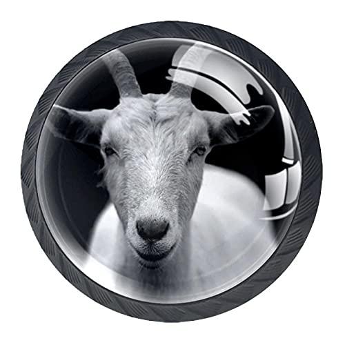 BestIdeas Okrągłe gałki do szuflad 4 opakowania 30 mm uchwyty zwierzę czarno-białe nadruki używane do sypialni komoda szafka szafka drzwi kuchenne
