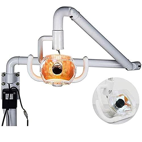 FASSTUREF Lámpara Dental Oral halógena sin Sombras montada en la Pared de 50W LED Examen médico, luz Dental médica quirúrgica