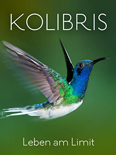 Kolibris - Leben am Limit [dt./OV]