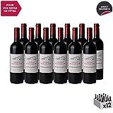 Château Gessan Rouge 2015 - Appellation AOC Saint-Emilion grand cru - Vin Rouge de Bordeaux - Cépages Merlot, Cabernet Franc, Cabernet Sauvignon - Lot de 12x75cl