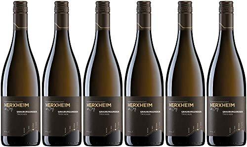 6x Grauburgunder trocken 2019 - Winzergenossenschaft Herxheim am Berg eG, Pfalz - Weißwein