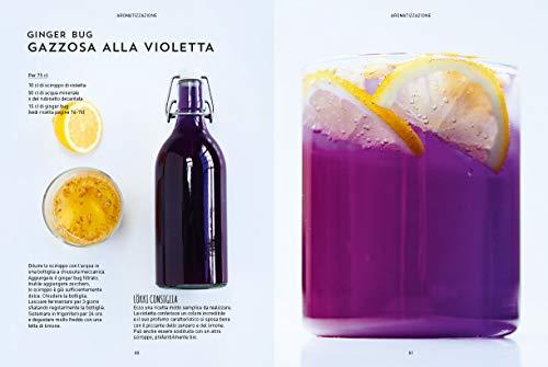 Kefir, kombucha & Co. Preparare le proprie bevande probiotiche naturali
