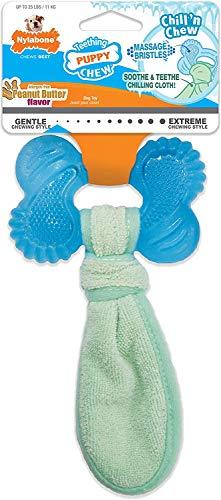 Nylabone Puppy Chew Freezer Dog Toy