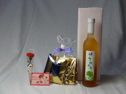 父の日 ギフトセット リキュールセット (完熟梅の味わいと日本酒のうまみをたっぷりの梅リキュール うめとろ500ml 7%奥の松酒造(福島県)+挽き立