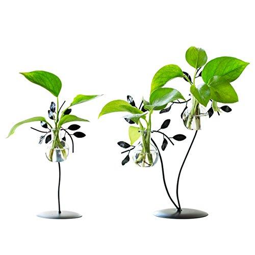 Moderner Glasblumen Vasen Wasserpflanzen Behälter Topf mit Metalltischplatten Stand Gestell für das dekorative Haus
