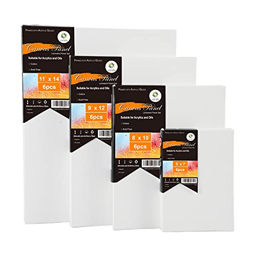 Conda 24 Packung Artist Blank Canvas Artist Stretched Canvas Set Professionelle Rahmenrahmen Leinwand 5x7in, 8x10in, 9x12in, 11x14in