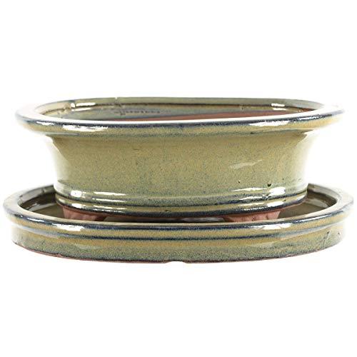 Bonsaischale mit Untersetzer 19.5x16x7cm Oliv Oval Glasiert