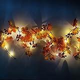LLDE Cadena de luces con pilas, hojas de arce, luces de hada con frutas rojas, guirnalda impermeable de otoño, cuerda de ratán, luces de Navidad, Acción de Gracias, Halloween, fiesta de decoración