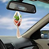tyoungg 17 inch Mini Car Hanging 1 Pcs Handmade Rear View Mirrior Charm Car Decorations Boho Hanging Planter with Pot and Plant for Car Home Decor Unique Mother Day Gift (1, A)