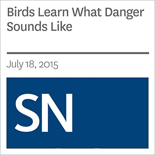 Birds Learn What Danger Sounds Like                   By:                                                                                                                                 Sarah Zielinski                               Narrated by:                                                                                                                                 Mark Moran                      Length: 3 mins     Not rated yet     Overall 0.0
