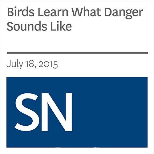 Birds Learn What Danger Sounds Like audiobook cover art