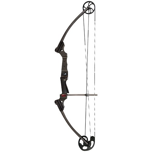 Genesis Bows Archery Bow, 15-30-Inch/10-20-Pound
