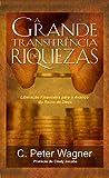 A Grande Transferência de Riquezas (SeteMontes Livro 7)