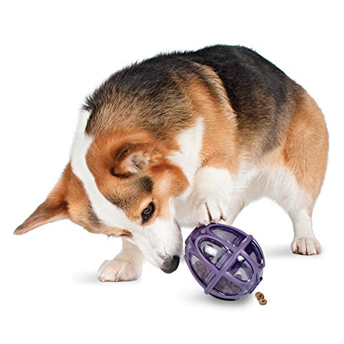 PetSafe Busy Buddy Kibble Nibble Meal Dispensing Dog Toy, Small -...