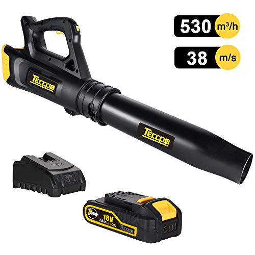 TECCPO Leaf Blower, 18V 2Ah Lithium Ion, 2-Speed Cordless Axial Fan Design Lightweight Professional Sweeper, Battery and Charger Included, Ideal for Sidewalks and Decks in Garden - TDAB02G