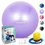 Palla da ginnastica/Palla Fitness,yoga palla equilibrio per fitness pilates palestra di yoga(55 cm,Viola)