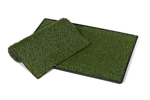 Prevue Pet Products Large Tinkle Turf with Replacement Pad 502K, Green
