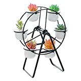 Youfui Ferris Wheel Plant Stand with 6 Planters Succulent Pots for Home Office Desk Decoration (Black)
