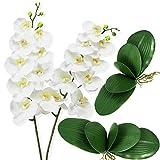 Ollain - 2 tallos de orquídeas artificiales y 2 hojas de orquídea falsa de seda, para decoración de bodas, fiestas, hogar, oficina, decoración (flor de Phalaenopsis blanca)