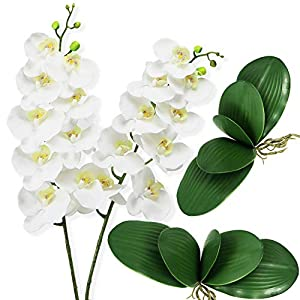Ollain Artificial Flowers 2pcs Orchids Stems and 2pcs Fake Orchid Leaves Silk Phalaenopsis Flower, for Wedding Festive Party Home Office Decoration (White Phalaenopsis Flower)