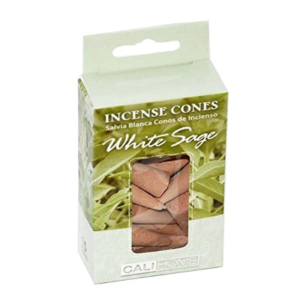 バースロック電気陽性Dollaritemdirect cali-home Incense Conesホワイトセージ15?ct,ケースof 48