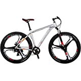 """29"""" Mountain Bike Lightweight Aluminum Frame Front Suspension Daul Disc Brakes 21 Speed Mens Bicycle 29er MTB (Silvery)"""