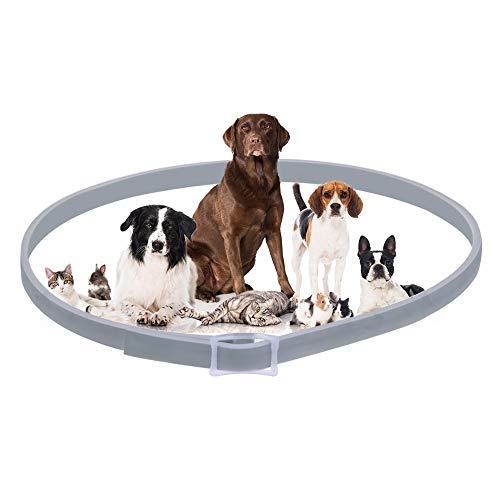 LAIYYI Hundehalsband gegen Flöhe Zecken Moskitos Outdoor Schutz verstellbar Floh- und Zeckenhalsband für Hunde und Katzen