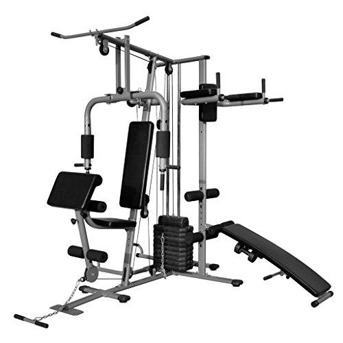 Festnight Multifunktions-Trainingsstation Fitnessgerät Heimtrainer Kraftstation für zu Hause 160 x 230 x 212 cm