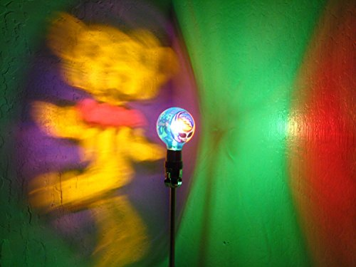 Hand-Painted Grateful Dead Dancing Bear with Lightning Bolt Mood-Light Bulb