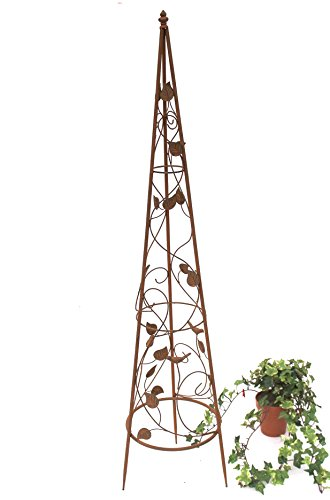 DanDiBo Rankhilfe Pyramide 082547 aus Metall 95 cm bis164 cm Kletterhilfe Rankgerüst Ranke (M - 118 cm)