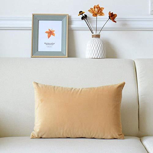 Funda cojin Set de 2 Funda de cojín de Terciopelo de Color sólido con Cremallera Oculta en la Cintura para Sala de Estar,Dormitorio,Coche-I_40 x 70 cm