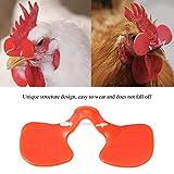 100 Unids Chicken Peepers Gafas de Ojo Faisán Aves de Corral Cegador Espectáculos...