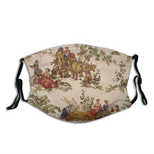 Mei-ltd French Country Toile Face Ma-sk Washable Reusable Adult Face Cover with Adjustable Nose Wire and Ear Loops