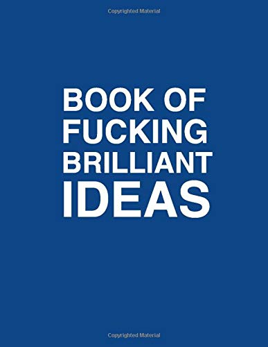Book of fucking brilliant ideas lean canvas | Entrepreneur Product Manager notebook: Blue funny gag gift notebook