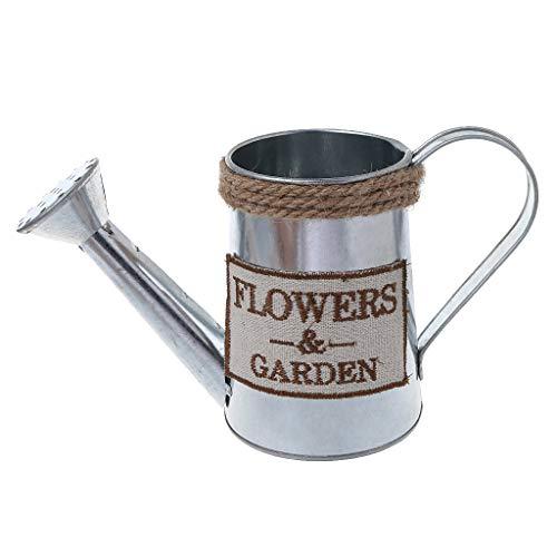 Baiyao - Jarras de metal para flores pequeñas con riego, para plantas suculentas, macetero de metal con asa para bonsái o macetas de jardín para decoración del hogar