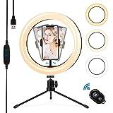 otumixx Ringlicht mit Stativ, Selfie Ringleuchte 10,2 Zoll 3 Farbe und 10 Helligkeitsstufen, LED Ringlicht mit Fernbedienung, für YouTube Tiktok Vlog Selfie Makeup Live Stream