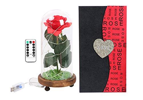 Langxun Silk Rose 'Bella y bestia' Flor...