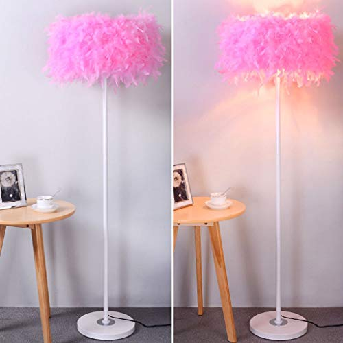 LY88 Licht Europese Stijl Eenvoudige Mode Veer Crystal Vloerlamp Kleur : Roze, Maat : -