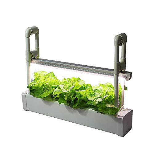 ZDYLM-Y Kit de Cultivo hidropónico, Smart Garden con luz de Crecimiento LED de Espectro Completo y recordatorio de Volumen de Agua, Control Inteligente,600mm