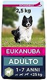 Eukanuba Cibo Secco per Cani Adulti Attivi di Taglia Piccola e...
