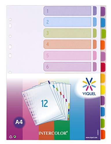 Viquel Lot de 12 Intercalaires en polypropylène A4 Intercolor