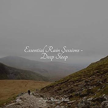 Essential Rain Sessions - Deep Sleep